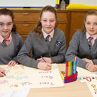Alannah Mulqueen, Nora Casey and Liza Cernova from the Advertising Team working on their posters for the Table Quiz