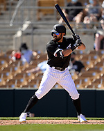 GLENDALE, ARIZONA - MARCH 05:  Adam Eaton #12 of the Chicago White Sox bats against the Seattle Mariners on March 5, 2021 at Camelback Ranch in Glendale Arizona.  (Photo by Ron Vesely) Subject:  Adam Eaton