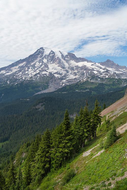 South Face of Mount Rainier seen from Pinnacle Peak Trail. Mount Rainier National Park, Washington