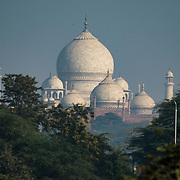The Taj Mahal viewed from Agra Fort, Agra, India.