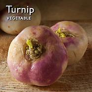 Turnip Pictures   Turnips Food Photos Images & Fotos