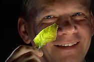 Deutschland: Arne Nowak mit einer übrig gebliebenen Glasscherbe der Blaschkas. Er ist der Besitzer des Blaschka Hauses und Gründer der Blaschka Haus e.V. und bemüht sich das Erbe der Blaschkas zu erhalten, dieses Glasmodell stammt aus dem Werk der naturwissenschaftlichen Glaskünstler Leopold Blaschka (1822-1895) und Sohn Rudolf Blaschka (1857-1939). Zwischen 1863 und 1890 entstanden in der Dresdner Werkstatt Tausende Glasmodelle wirbelloser Meerestiere, die ihren Weg in Museen und Universitäten der ganzen Welt fanden. Diese Nachbildungen verblüffen bis heute, denn sie sind morphologisch fehlerfrei und halten naturwissenschaftlichen Betrachtungen bis ins Detail stand - die perfekte Verschmelzung von Kunst und Naturwissenschaft. Die Blaschkas hatten weder Lehrlinge noch Nachfahren. Vater und Sohn haben das Geheimnis ihrer einzigartigen Technik mit ins Grab genommen, Blaschka Haus, Dresden, Sachsen | Germany: Arne Nowak with an extant piece of broken glass of the Blaschkas. He is the owner of the house and founder of the Blaschka Haus e.V. and endeavouring to receive the legacy of the Blaschkas, this glass model originated from the work of the scientific glass artists Leopold Blaschka (1822-1895) and his son Rudolf Blaschka (1857-1939). Between 1863 and 1890 thousands of glass models of invertebrates sea animals developed in the workshop in Dresden, which found their way in museums and universities of the whole world. These reproductions amaze until today, because they are morphologically exact and withstand scientific examinations in detail - the perfect fusion of art and natural science. The Blaschkas didn?t have apprentices and it gives no further descendants. Father and son took the secret of their inimitable technology also in the grave, Blaschka house, Dresden, Saxonia |