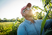 Bill Tracy has been researching sweet corn for 40 years, 30 of them at the University of Wisconsin Madison.
