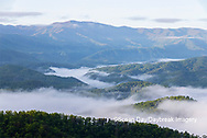 66745-04919 Early morning fog along Foothills Parkway Great Smoky Mountains National Park TN