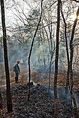 Controlled Burn Medford, NJ