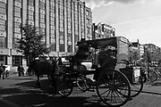 Horse and wagon in Amsterdam, Holland