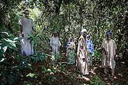 Sacred Forest Tchavadé