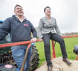 The Scottish Conservative leader Ruth Davidson rides a buffalo, with Steve Mitchell, buffalo farmer.