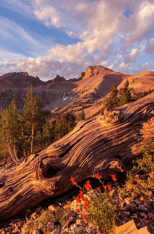 Cloud Formations, Wheeler Peak and Paintbrush, Great Basin National Park, Nevada