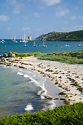 Saffron Cove and Cromwell's Castle as seen from Plumb Hill. Tresco, Isles of Scilly, Cornwall, UK.
