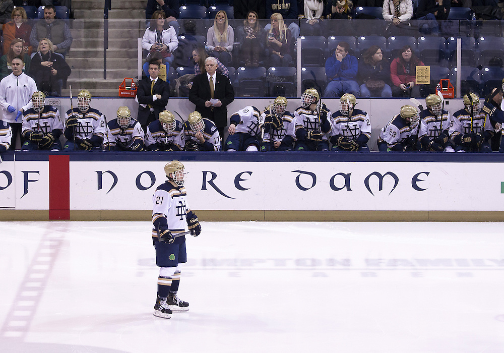 January 25, 2013:  The Notre Dame bench during NCAA Hockey game action between the Notre Dame Fighting Irish and the Ferris State Bulldogs at Compton Family Ice Arena in South Bend, Indiana.  Ferris State defeated Notre Dame 3-1.