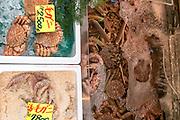 Live crabs for sale, Tsukiji fish market, Tokyo, Japan