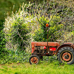 A red tractor sits in a small field with the green of Spring all around.