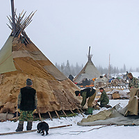 As a Komi reindeer herding clan prepares to move, they strip a canvas cover off a chum, exposing the warm reindeer skin lining below.  Piece by piece, everything will be loaded onto reindeer-driven sleds and driven across the tundra north of the Arctic Circle in Russia.