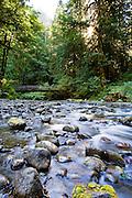 River near Marymere Falls