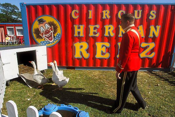 Nederland, Nijmegen, 30-4-2007..Een medewerker van het Circus Renz drijft een paar ganzen naar het hok om ze vervolgens de piste op te rijden waar de dieren hun kunstje doen...Foto: Flip Franssen/Hollandse Hoogte