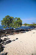 Airport Beach, Kailua Kona, Island of Hawaii, Hawaii