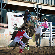 Tjay allen rides Red Eye Rodeo bucking bull Speedy at the Darby MT Elite Proffesionals Bull Riding Event July 7th 2017.  Photo by Josh Homer/Burning Ember Photography.  Photo credit must be given on all uses.