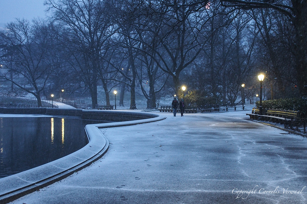 The beginning of a snowstorm in Central Park