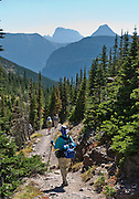 """Hike through forest beneath pyramidal peaks on the trail to Ptarmigan Lake, in Glacier National Park, Montana, USA. (A side trail departs at Ptarmigan Falls to visit Iceberg Lake, which can be a separate day hike, or long extension.) Since 1932, Canada and USA have shared Waterton-Glacier International Peace Park, which UNESCO declared a World Heritage Site (1995) containing two Biosphere Reserves (1976). Rocks in the park are primarily sedimentary layers deposited in shallow seas over 1.6 billion to 800 million years ago. During the tectonic formation of the Rocky Mountains 170 million years ago, the Lewis Overthrust displaced these old rocks over newer Cretaceous age rocks. Glaciers carved spectacular U-shaped valleys and pyramidal peaks as recently as the Last Glacial Maximum (the last """"Ice Age"""" 25,000 to 13,000 years ago). Of the 150 glaciers existing in the mid 1800s, only 25 active glaciers remain in the park as of 2010, and all may disappear by 2020, say climate scientists."""