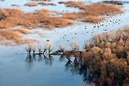 Lake Skadar National Park, Montenegro © Rudolf Abraham