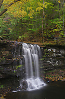 Harrison Wrights Falls, Ricketts Glen State Park, Pennsylvania