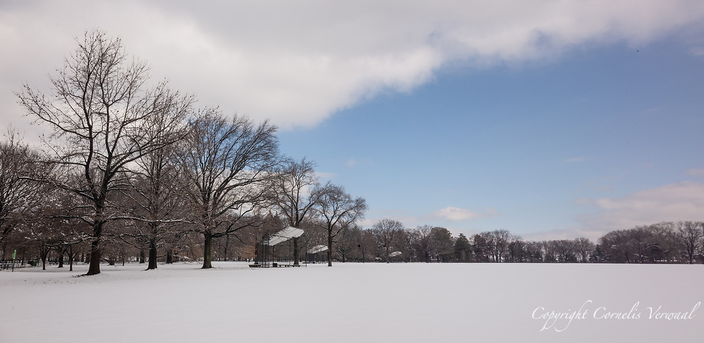The Great Lawn in Central Park covered in snow.
