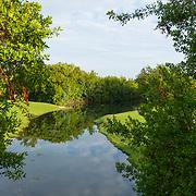 El Camaleon Golf course. Mayakoba. Riviera Maya. Quintana Roo, Mexico.