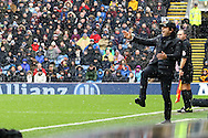 Chelsea Manager Antonio Conte reacts and shouts from the touchline. Premier league match, Burnley v Chelsea at Turf Moor in Burnley, Lancs on Sunday 12th February 2017.<br /> pic by Chris Stading, Andrew Orchard Sports Photography.