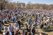 "Brooklyn, NY - 17 April 2016. An overall vew of only a part of the crowd who came to see and hear Sanders. Sanders' team estimated over 28,000 attendees. Vermont Senator Bernie Sanders, who is running as a Democrat in the U.S. Presidential primary elections, held a campaign ""get out the  vote"" rally in Brooklyn's Prospect Park."