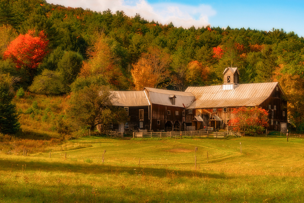 A Vermont barn, with additions, some a bit crooked, nestles against a hillside punctuated by Fall colours and late afternoon light.