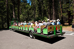 Public Transportation; tourists; tram; sightseeing, Yosemite National Park, California, USA.  Photo copyright Lee Foster.  Photo # california121227