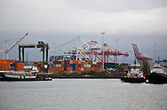Photo Randy Vanderveen.Seattle, WA.Container ships being loaded at the Port of Seattle
