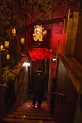 The launch of Beaver Lodge in Chelsea, a cabin bar and dance saloon, 266 Fulham Rd. London. 4 December 2014
