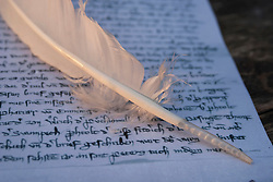 Close up of quill on document
