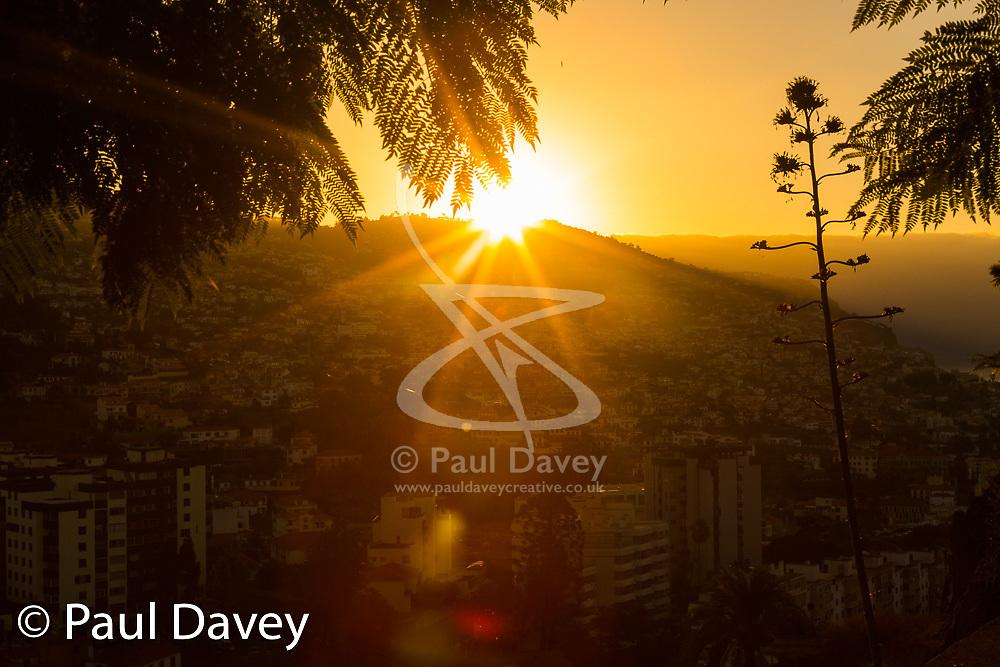 MADEIRA, September 22 2018. © Paul Davey