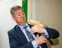 Pictured: Keith Brown and Edgar the Ferret<br /> <br /> Cabinet Secretary for Economy, Jobs & Fair Work Keith Brown visited Gorgie City Farm today  to mark their accreditation as the 800th Living Wage employer in Scotland. Mr Brown met Josiah Lockhart, CEO and undertook a short tour of the farm, celebrating their accreditation and promoting the Living Wage more generally. The Scottish Government has set a target of reaching 1,000 Scottish-based Living Wage Accredited Employers by autumn 2017. While at the farm Mr Brown met Maia Gordon, Kirsty McGoff (17) and Zoe White (18), who have benefited from the living wage, and George Ellis, chair of the farm's board of directors<br /> Ger Harley   EEm 18 May 2017