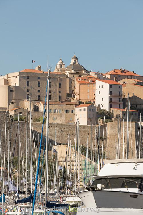 Harbor and citadel under blue sky, Calvi, Corsica, France
