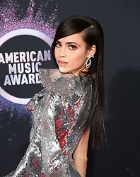 2019 American Music Awards - Arrivals. 24 Nov 2019 Pictured: Sofia Carson. Photo credit: Jen Lowery / MEGA TheMegaAgency.com +1 888 505 6342