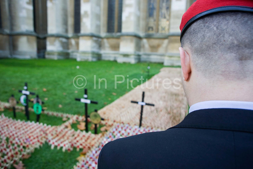 A serving soldier in civilian suit but wearing a red beret of the Royal Military Police (RMP), looks poignantly down on markers that symbolise war dead, hundreds of crosses and poppies mark anonymous fallen British soldiers and other servicemen and women, all killed during recent conflicts. Dedications from loved-ones or simply well-wishers are written on the wooden crosses on the weekend that Britain commemorates those killed on active service in trouble spots and war locations around the world, the markers a laid on the grass of Westminster Abbey's lawns on Parliament Square, opposite the Houses of Parliament. Armistice weekend is largely held on the closest Sunday to the 11th hour of the 11th Day of the 11th Month, when hostilities famously ended in on 11th November 1918.