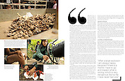 """Marie Claire Reportage feature story - Female bomb clearance team in Laos working for Mines Advisory Group (MAG).  ....Laos was part of a """"Secret War"""", waged within its borders primarily by the USA and North Vietnam.  Many left over weapons supplied by China and Russia continue to kill.  However, approximately 270 million fist size cluster bombs were dropped on Laos by the USA, with a failure rate up to 30 percent.  Millions of live cluster bombs still contaminate large areas of Laos causing death and injury....."""