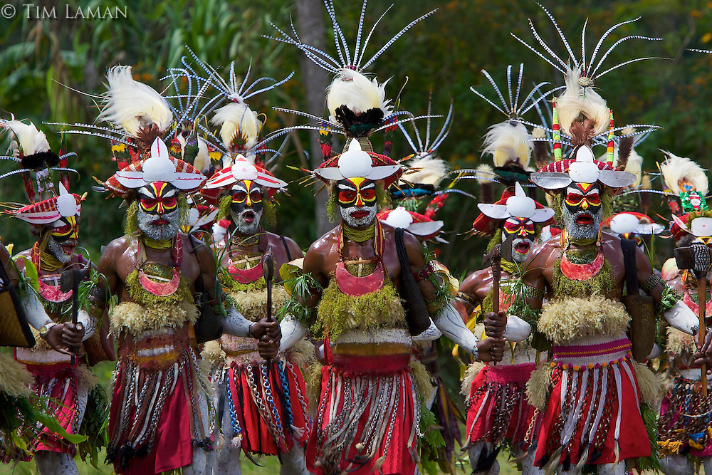 """Villagers at Payakona Village in a traditional singsing ceremony put on as part of a """"compensation"""".  Feathers of multiple species of Birds of Paradise adorn their headdresses, which are famiy heirlooms.  Traditional use of feathers such as this continues in New Guinea."""