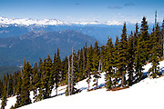 View from the top of Blackcomb Peak