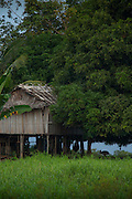 wooden hut on stilts, Lake Murray, Middle Fly District, Western Province, Papua New Guinea