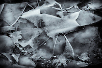 Abstract of shattered ice on a wind blown beach