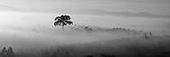 Vietnam Images-Panoramic landscape-nature-Bao Loc