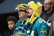 Jaguar fans during the NFL game between Houston Texans and Jacksonville Jaguars at Wembley Stadium in London, United Kingdom. 03 November 2019