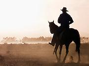Rancher on horseback, Flinders Range, South Australia, Australia