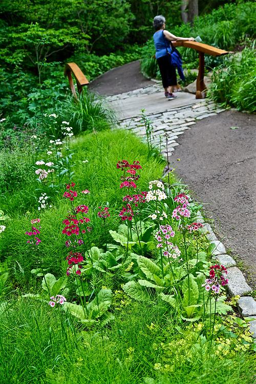 Mixed flora and bridge design, Chanticleer Gardens, Wayne, PA