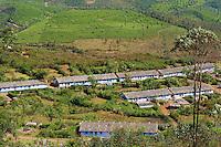 Inde, Etat du Kerala, Munnar, plantation de the, village des ouvriers tamoul // India, Kerala state, Munnar, tea plantations, Tamil tea worker village
